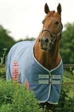 Horseware Stalldecke